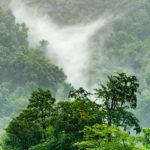 opta data ist klimaneutral und entwickelt Nachhaltigkeitsstrategie